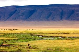 Landscape, Ngnorongoro Crater