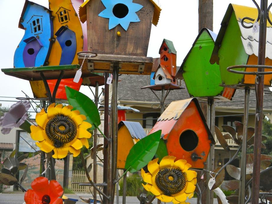 Texas bird boxes